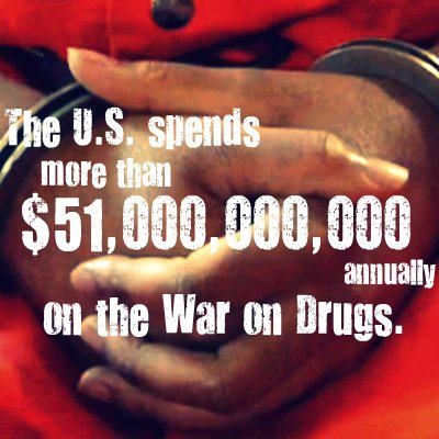 stop the war on drugs essay